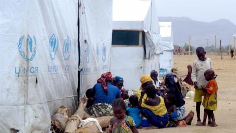 refugies de boko haram