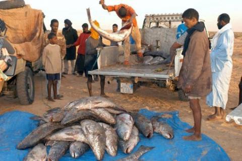 pêcheurs mauritaniens