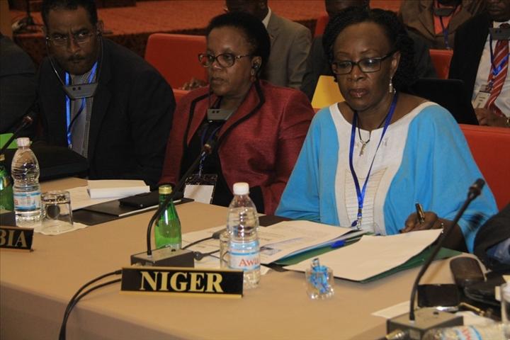 FAO Ouverture Conference Regionale 0006